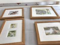 Four animal pictures with frames