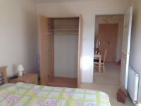 Sunny Double Room to Rent Near The City Centre
