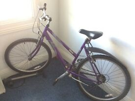 Ladies Raleigh bike great condition