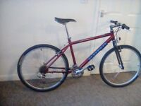 Mountain bike.....rare kona