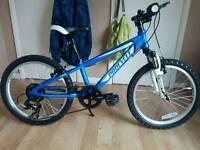 "Procycle 20"" kids mountain bike"