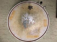 """SNARE DRUM 14"""" (360MM) CHROME With Remo top and Evans sonic 300mmGL side 6"""" deep"""
