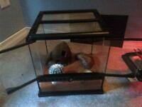 exo-terra cage for small lizard or bug or small creature