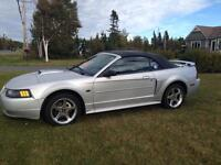 Ford Mustang 2003 GT Convertible