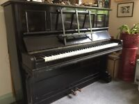 Bechstein Piano: Free to good home but collection is your responsibility. Must go before 05.09.2016