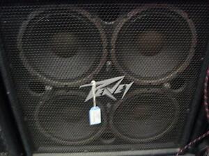 Cab de Bass Peavey 4X10