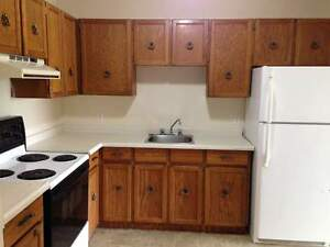 Amazing 2 BD Apartments in Regina January Rent Only $500