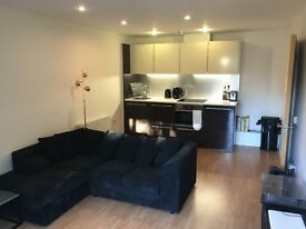 Stunning 1 Bedroom Flat to Rent in Angel, Islington, N1, NO FEES!