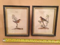 Pair of Framed Bird Pictures