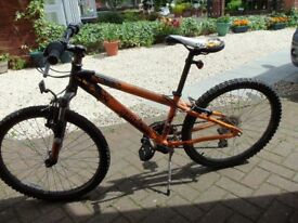 Childrens mountain bike
