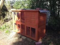 ****Guinea Pig Rabbit Hutch for Sale