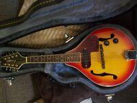 westfield semi acoustic mandolin