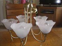 A pair of brass chandelier lights
