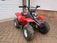 Quad 50cc four stroke