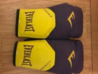 Everlast boxing glives