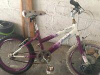 Raleigh Girls bike needs servicing