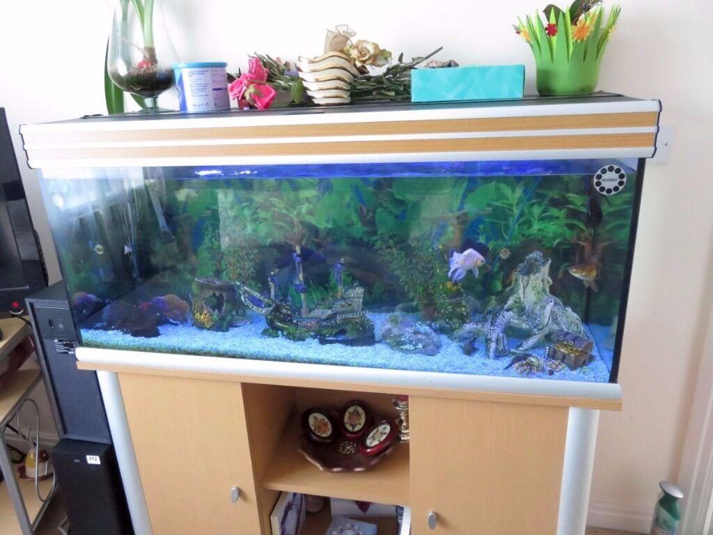 Cabinet aquarium fish tank tropical - Fish Tank Cabinet Aquarium Tropical 300 Litre Led Light