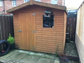 8 x 6 Garden Shed - Excellent Condition