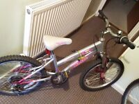 Girls Bike, pink colours and silver seat