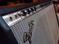 Fender Pro Reverb 70s (Full Service and Re-Cap with Blackface mods)