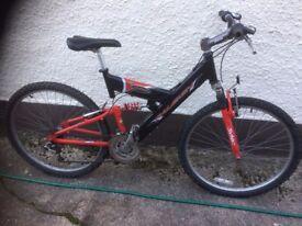 Boys Mountain bike.