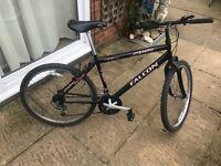Excelente Mountain Black Bike