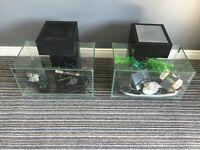 2 x fluval edge fish tanks & extras