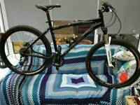 Specialized rockhopper comp mountain bike size 19