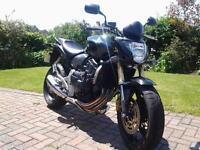 Honda Hornet CBF600 Black 2008 plate millage 6900