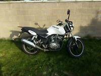 White Zontes Panther 125cc Learner Legal