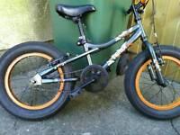 Jnr boys Phat bike
