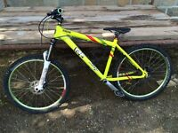 Ragley Marley Mountain Bike