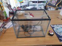 Small Rectangular Fish Tank and Filter