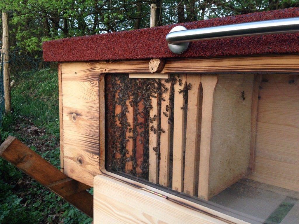 BienenHaus mit Sichtfenster Schaukasten Bienenbeute Bienenbox Bienenkiste Imkern