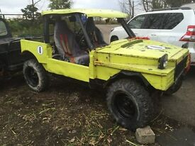 OFF ROAD 4X4 BUGGY 3.5 V8 PETROL