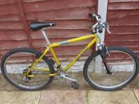MENS 18 INCH GIANT BOULDER SUSPENSION MOUNTAIN BIKE 21 SPEED SMETHWICK £60