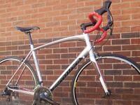 Specialized Allez Sport Road Racing Bike, Carbon Fork, 58cm- MINT!
