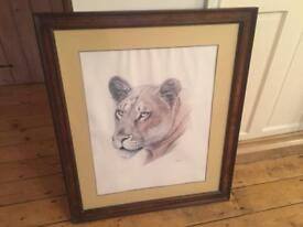 Guy Coheleach signed lithograph