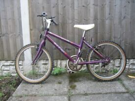 Bike (Young Person's)