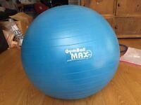 Gym ball with Furriball cover