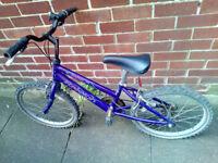 Girls Raleigh Salsa Mountain Bike