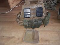 Plate carrier with pouches