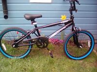 BRAND NEW OUT THE BOX. MUDDYFOX WHIPLASH BMX FROM 8 YRS TO ADULT***FREE DELIVERY HULL ONLY***