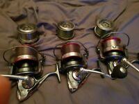 Fox worrior s rods big pit reels and lures
