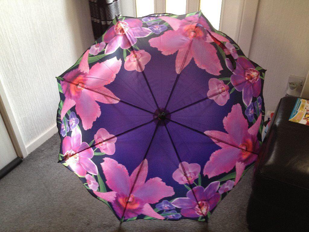 *****STAR BUY - Clifton Automatic Umbrella