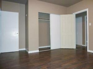 Newly renovated bachelor for $783 with free Telus high speed int Edmonton Edmonton Area image 1