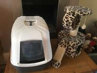 Cat litter train and play house toy