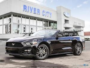 2017 Ford Mustang Premium-INCLUDES FREE YAMAHA HOME THEATER PKG