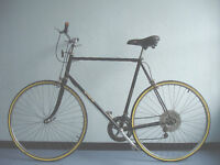Great french bike, 12 Speed commuter, serviced
