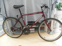 ADULTS NICE QUALITY AT100 CLASSIC MOUNTAIN BIKE IN GOOD CONDITION.